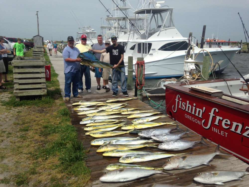Great dolphin fishing today fishin frenzy for How is fishing today