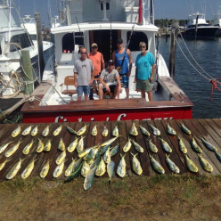 Lots of Mahi